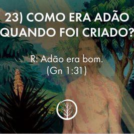 Pergunta 23: Como era Adão quando foi criado?