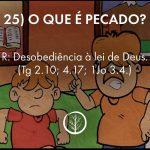 Pergunta 25: O que é pecado?