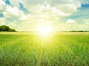 Como passar cada um de seus dias com Deus